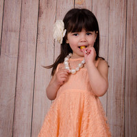 "The ""Madeline"" Vintage Lace Dress Flower Girl Party Dress"