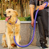 Stereotyped Rope Large Dog Leashes