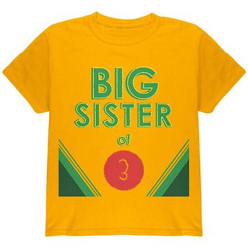 Crayon Big Sister of 3 Youth T Shirt