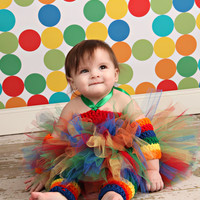 Rainbow Tulle Tutu Costume with Hand Crochet Accessories for Baby, Toddler, Girls, Party, Halloween, Costume, Rainbow Brite inspired