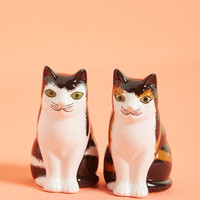 Paws Me the Pepper Shaker Set