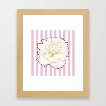 Pale Rose on Stripes Framed Art Print by drawingsbylam