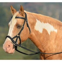 Two Horse Tack - SIDEPULL Bitless Bridle made from LEATHER