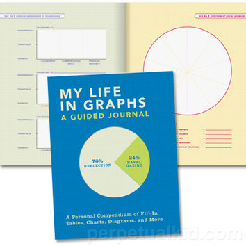 MY LIFE IN GRAPHS GUIDED JOURNAL