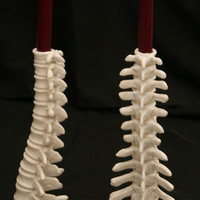 Anatomical Spine candle holder