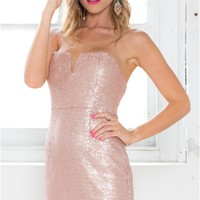 Sparks Fly Dress in Blush Sequins | SHOWPO Fashion Online Shopping