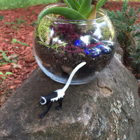 Large Recycled Lemur Terrarium