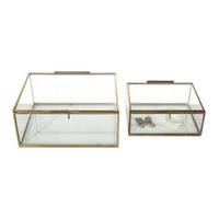 Antiqued Brass & Glass Exhibition Boxes - Set of 2