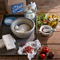 DIY Feta Cheese-Making Kit