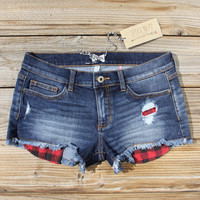 Camper Plaid Shorts