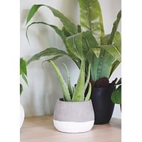 "Round Color Block Planter - 5.25"" Tall x 6.75"" Wide"