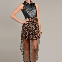 Leopard and Leather Dress
