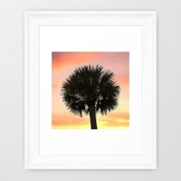 Palm and Sunset Framed Art Print by Legends Of Darkness Photography