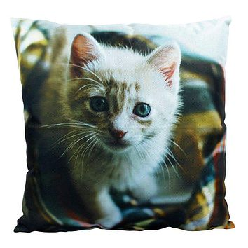 Cat | Cute Cat | Cat Pillow | Cat Gifts | Cat Decor | Cat Photo | Gifts for Cat Lovers | Accent pillow | Throw Pillow Covers