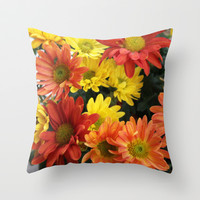 Red, yellow and orange colorful autumn daisy flowers. floral photography. Throw Pillow by NatureMatters