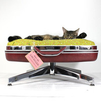 Customize Your Bed- Upcycled Pet Bed - Pedestal Base