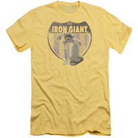 IRON GIANT/PATCH-S/S ADULT 30/1-BANANA