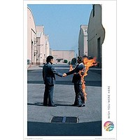 (24x36) Pink Floyd (Wish You Were Here, Man on Fire ) Music Poster Print