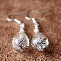 Nature Inspired Jewelry Real Dandelion Earrings (HM0049)
