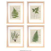 Fern set of 4 prints-botanical fern set of 4 dictionary print-kichen wall art-kitchen decor-botanical wall art-home decor-gift idea-DP237