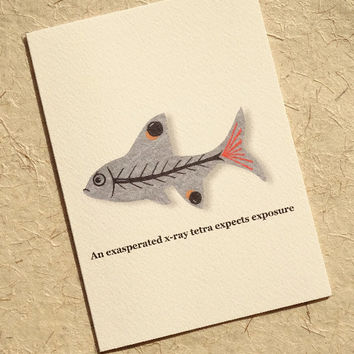 Animal card, hand-illustrated x-ray tetra fish design with a witty alliterative phrase, adorably cute greeting card for lovers of sealife