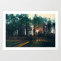 The Trees and The Sun Art Print by Chelsea Victoria
