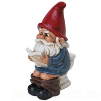 GNOME ON THE THRONE