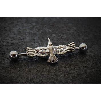 Silver Raven Industrial Barbell