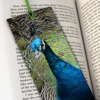 Perfect Peacock Bookmark