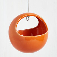 Dorm Decor Growing Up Hanging Planter in Persimmon by ModCloth