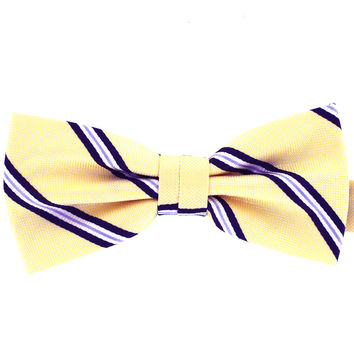 Tok Tok Designs Formal Dog Bow Tie for Large Dogs (B486)