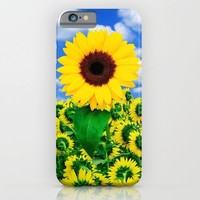 SUNNY DAY iPhone & iPod Case by Ylenia Pizzetti