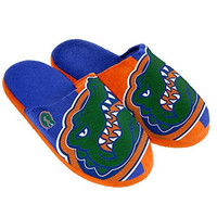 NCAA Florida Gators Split Color Slide Slipper, Medium, Blue