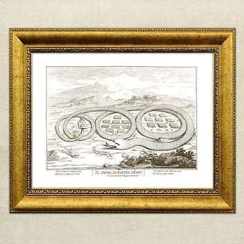 The American Rattle Snake Poster Giclée Print