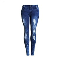 2083 New 2017 Women's Autumn Vintage Embroidery Sexy Ripped Jeans Pencil Stretch Denim Pants Female Slim Skinny Trousers Jeans