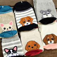 6-Pair Value Pack: Cute Puppy Socks Set
