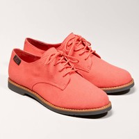 Bass Ely-2 Oxford   American Eagle Outfitters