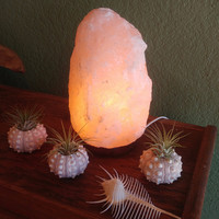 Salt Rock Crystal Lamp