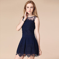 Sleeveless Lace Accent Sleeveless Pleated A-Line Mini Dress