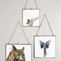 Hinged Hanging Picture Frame by Anthropologie