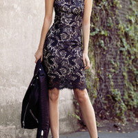 Black Halter Backless Lace Bodycon Dress
