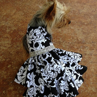Custom Made Dog Pet Clothing Dress - Black Scroll