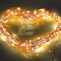TaoTronics TT-SL032 Led String Lights 100 LED Warm White Color on Copper Wire 33ft LED Starry Light with 12v Power Adapter For Christmas Wedding and Party