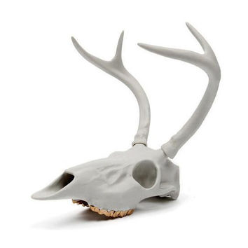 Deer Porcelain Skull Sculpture