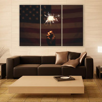 American Flag Canvas Print 3 Panels Print Firecracker Art Wall Deco Fine Art Photography Repro Print for Home and Office Wall Decoration