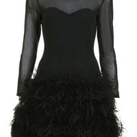 PROJECT #3 Mesh Feather Dress - Dresses  - Clothing