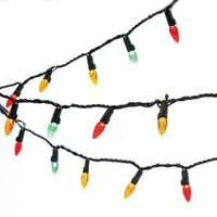 Multi-Colored Led Holiday Lights