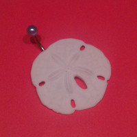 Sand Dollar Belly Button Navel Ring Jewelry with Pearl Authentic One of a Kind