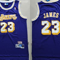 Adidas LA Lakers #23 LeBron James Retro Basketball Jersey