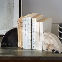 PETRIFIED WOOD BOOKENDS, SET OF 2